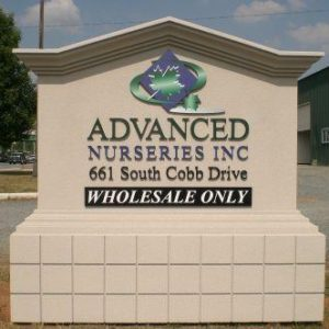 roswell_business_signs_005_lg