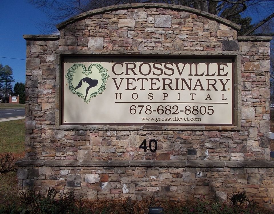 Sandblasted Signs in Atlanta